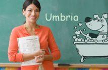 Corso Scuola Toelettatura Toelettatore Umbria