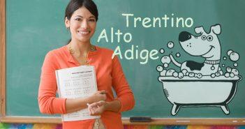 Corso Scuola Toelettatura Toelettatore Trentino Alto Adige