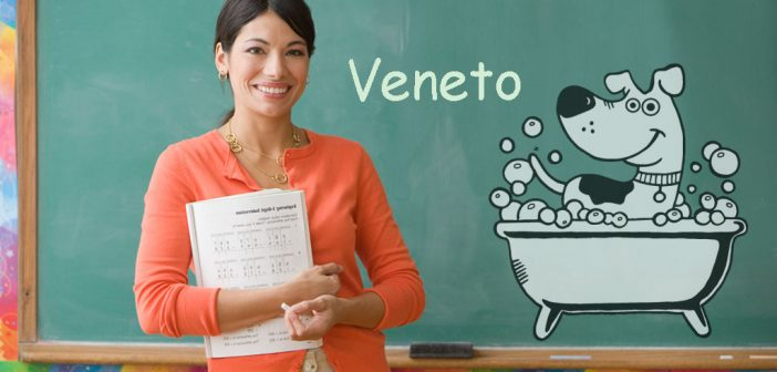 Corso Scuola Toelettatura Toelettatore Veneto